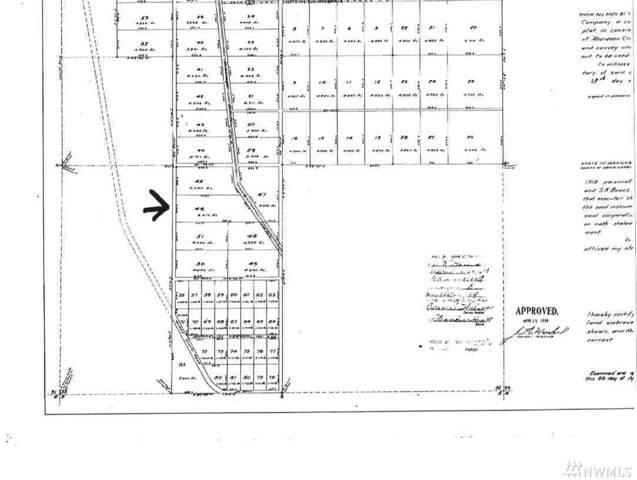 3677 Larkin Road, North Cove, WA 98547 (#1533706) :: Real Estate Solutions Group