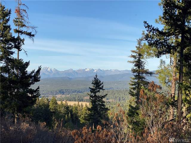 8440 Upper Peoh Point Road, Cle Elum, WA 98922 (#1537181) :: Becky Barrick & Associates, Keller Williams Realty