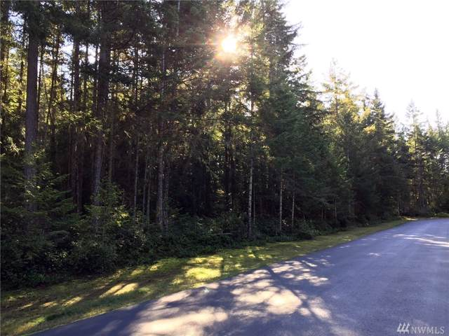 9999 Hunt Rd Lot 4, Port Angeles, WA 98363 (#1539074) :: Real Estate Solutions Group