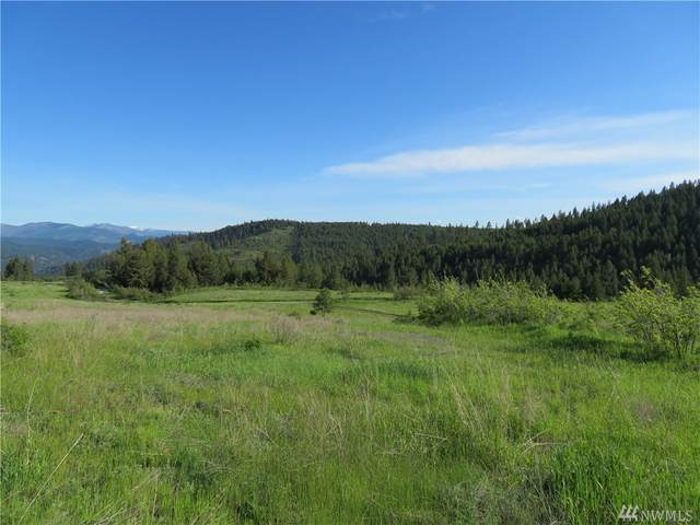 0-TBD Big Goosmus Creek Rd, Curlew, WA 99118 (#1539504) :: Priority One Realty Inc.