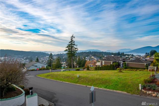 2202 Dublin Place, Anacortes, WA 98221 (#1540760) :: Ben Kinney Real Estate Team