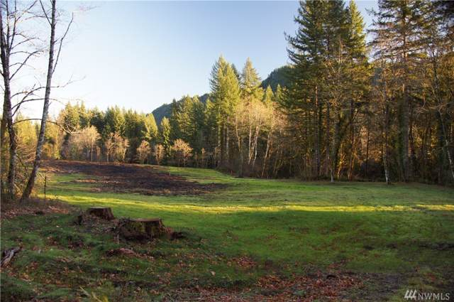 11105 Lewis River Road, Ariel, WA 98603 (#1544474) :: Pacific Partners @ Greene Realty