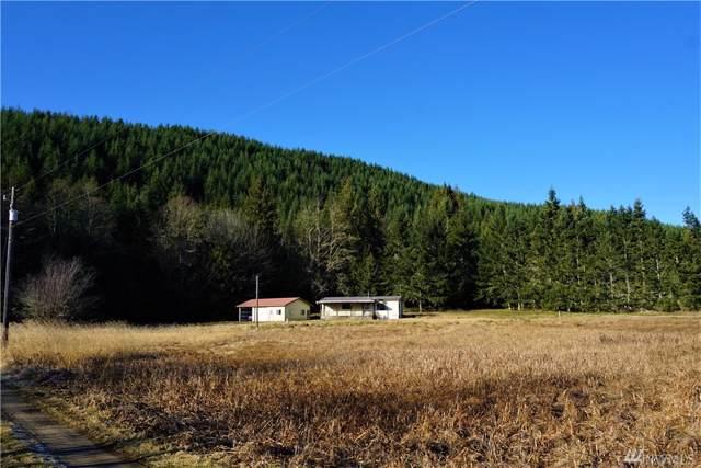 2088 Lost Mountain Rd, Sequim, WA 98382 (#1544870) :: Hauer Home Team