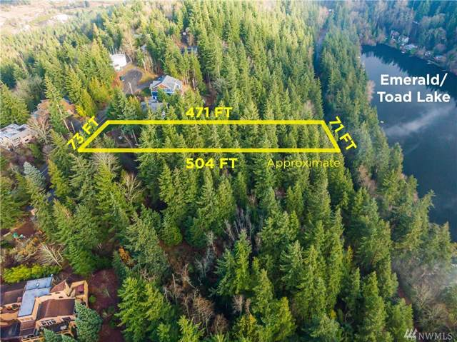 1746 Sapphire Trail, Bellingham, WA 98226 (#1546394) :: Ben Kinney Real Estate Team