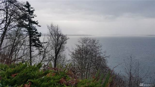 31 K Beach Dr, Hat Island, WA 98260 (#1546667) :: Crutcher Dennis - My Puget Sound Homes