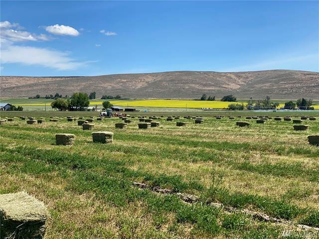 4 Lyons Road, Ellensburg, WA 98926 (#1548441) :: Better Homes and Gardens Real Estate McKenzie Group