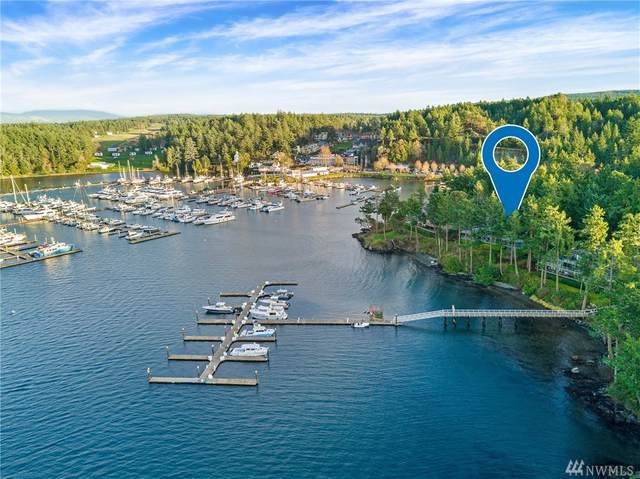 184 Armadale Rd #5, Friday Harbor, WA 98250 (#1550072) :: Northern Key Team