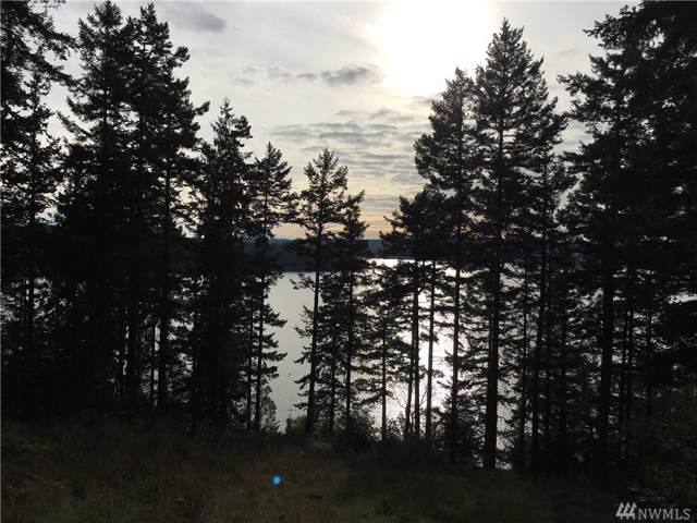 40 Summit Dr, Decatur Island, WA 98221 (#1552678) :: Real Estate Solutions Group
