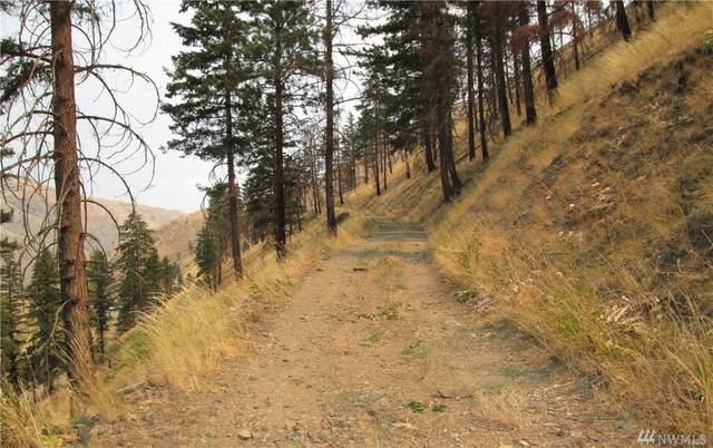 0-NNA Mills Canyon Road, Entiat, WA 98822 (#1552982) :: Northwest Home Team Realty, LLC