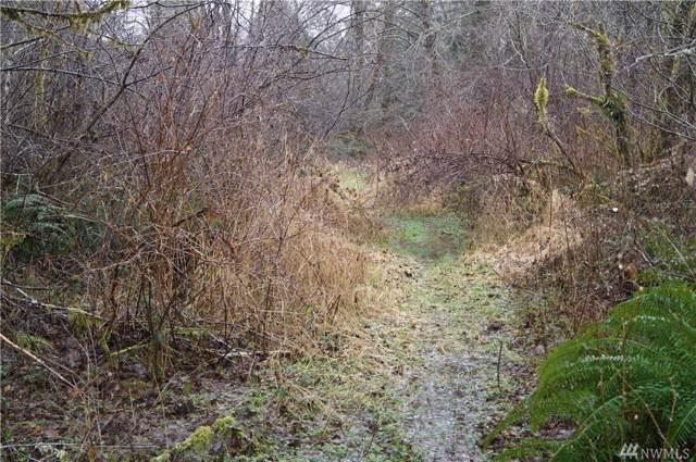 551 W River Run Rd, Elma, WA 98541 (#1553749) :: Northwest Home Team Realty, LLC