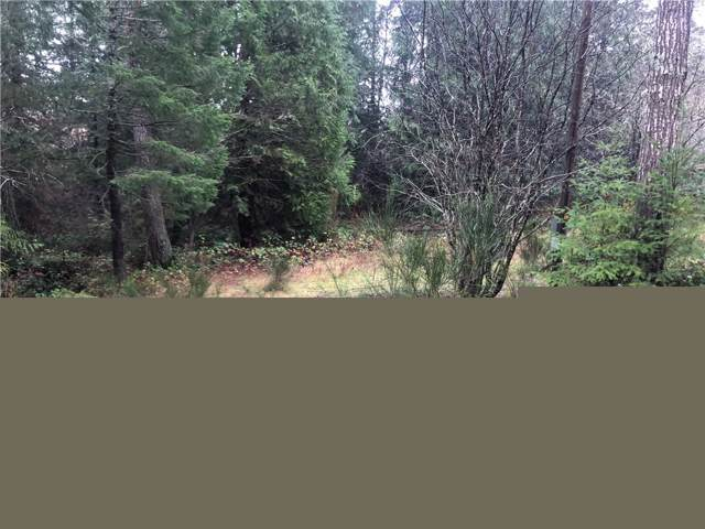 330 E Dartmoor Dr, Shelton, WA 98584 (#1555249) :: Real Estate Solutions Group