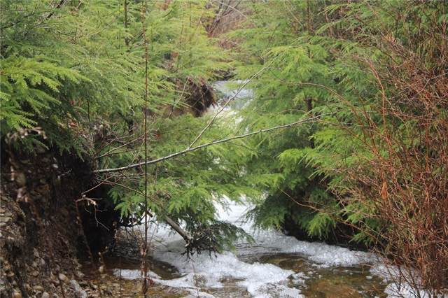 34-4 Cedar Creek Rd, Forks, WA 98331 (#1557241) :: Keller Williams Western Realty