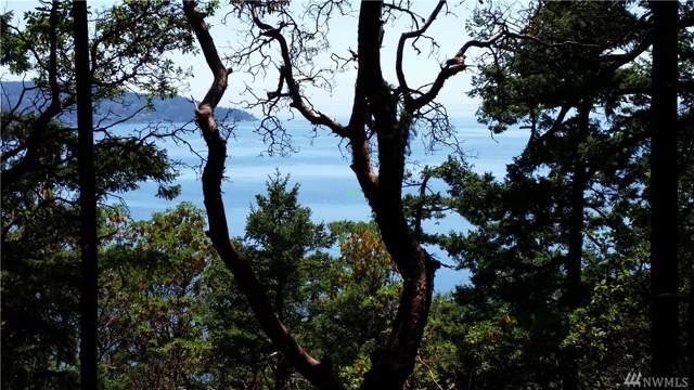 0 Marine Drive, Anacortes, WA 98221 (#1558748) :: NextHome South Sound