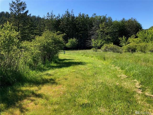 16 Airport Perimeter Wy, Decatur Island, WA 98221 (#1558810) :: The Kendra Todd Group at Keller Williams