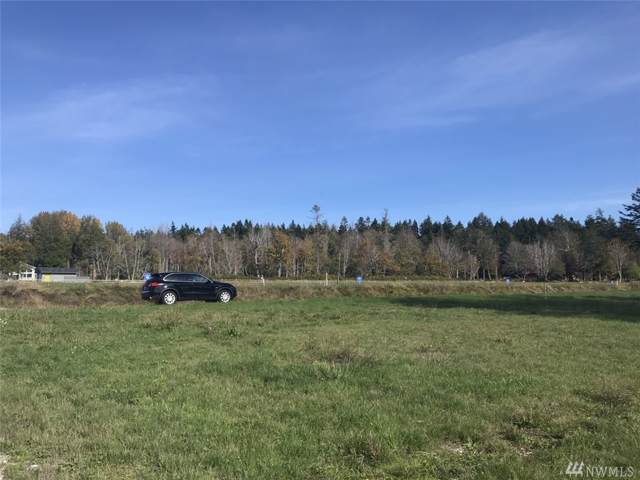 2242 Seabright Loop Lot 9, Point Roberts, WA 98281 (#1559636) :: Alchemy Real Estate