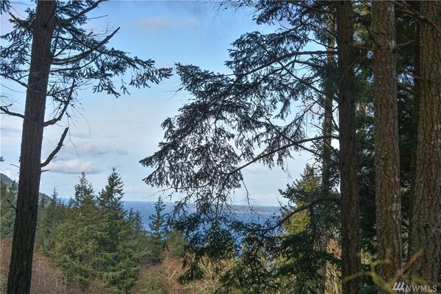 22 Tsuga Lane, Orcas Island, WA 98279 (#1560695) :: NextHome South Sound