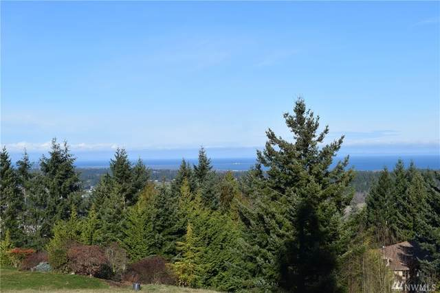 9 Fox Hollow, Sequim, WA 98382 (#1562392) :: Alchemy Real Estate