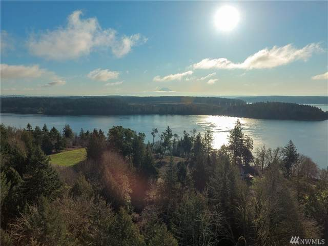 0 45th St SW, Lakebay, WA 98349 (#1564008) :: Lucas Pinto Real Estate Group
