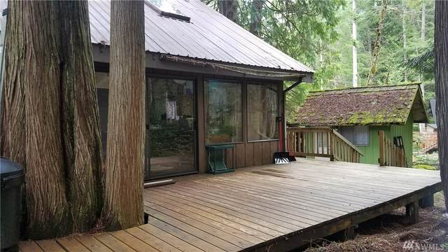 114 Timber Trail, Packwood, WA 98361 (#1569526) :: Northern Key Team