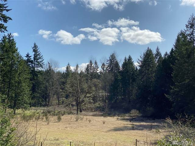 15737 109th Ave SE, Yelm, WA 98597 (#1572338) :: Real Estate Solutions Group