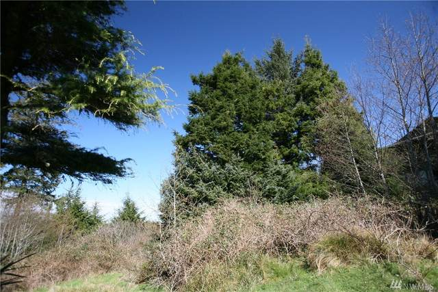 21-xx Wecoma Place SW, Ilwaco, WA 98624 (#1575047) :: Real Estate Solutions Group