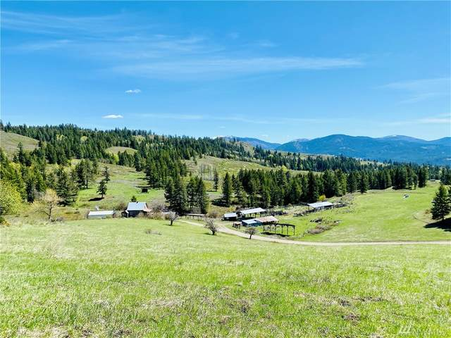 90 Brenner Rd, Curlew, WA 99118 (#1576888) :: Priority One Realty Inc.