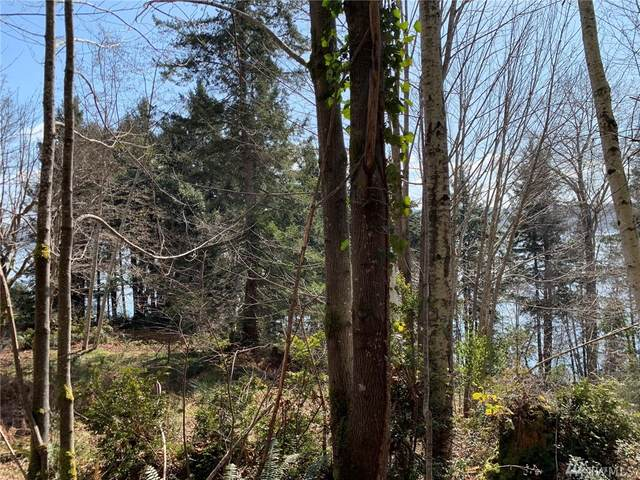 7363 NE North Shore Rd, Belfair, WA 98528 (#1577993) :: Real Estate Solutions Group