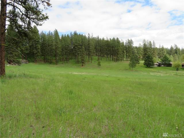 0-TBD Klondike Rd, Republic, WA 99166 (MLS #1578932) :: Nick McLean Real Estate Group