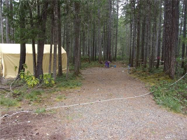 121 N Conifer Crest, Hoodsport, WA 98548 (#1581912) :: M4 Real Estate Group