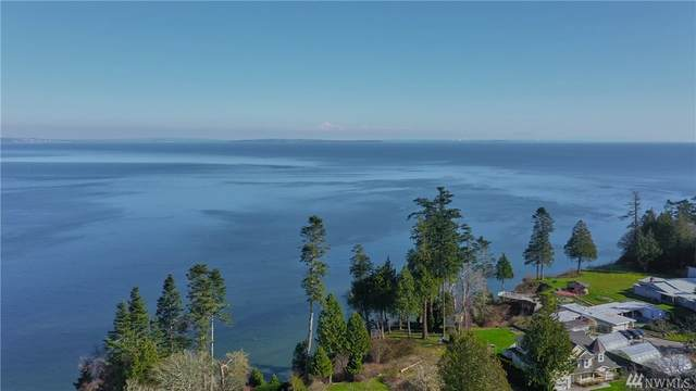 1-Lot Boundary Bay Rd, Point Roberts, WA 98281 (#1582166) :: NW Homeseekers