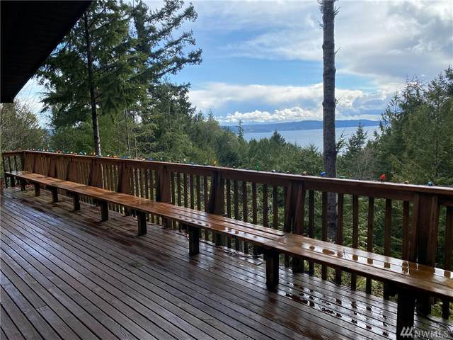 531 Seamount Dr, Brinnon, WA 98320 (#1583551) :: Real Estate Solutions Group