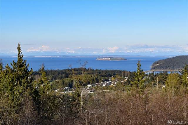 710 Solana Pkwy, Sequim, WA 98382 (#1583624) :: The Kendra Todd Group at Keller Williams