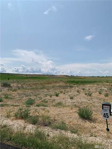 6549 SE Hwy 262   Lot 45, Othello, WA 99344 (MLS #1584828) :: Nick McLean Real Estate Group