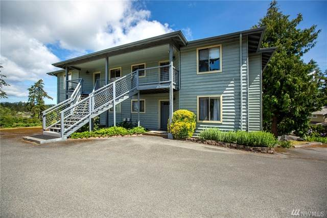 500 Jensen Alley B, San Juan Island, WA 98250 (#1585453) :: KW North Seattle