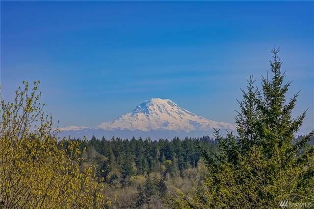 10104 51st St NW, Gig Harbor, WA 98335 (#1589150) :: Real Estate Solutions Group