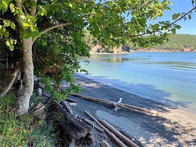 5 Stuart Island NE, Stuart Island, WA 98250 (#1589722) :: The Robinett Group