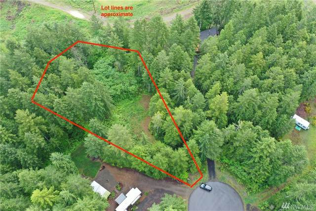 31 N Wood Duck Ct E, Hoodsport, WA 98548 (#1597890) :: M4 Real Estate Group
