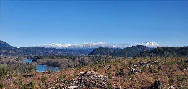 0 S. Skagit Highway, Sedro Woolley, WA 98284 (#1602851) :: NextHome South Sound