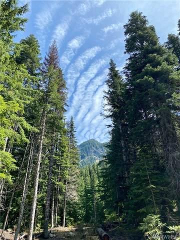 68 Alta Loop, Snoqualmie Pass, WA 98068 (MLS #1603581) :: Nick McLean Real Estate Group