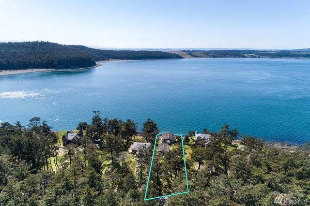 799 Cape Dr, Friday Harbor, WA 98250 (#1608068) :: Ben Kinney Real Estate Team