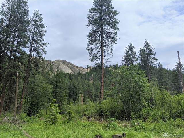 0 Mule Tail Flats Road, Leavenworth, WA 98826 (#1611832) :: Lucas Pinto Real Estate Group