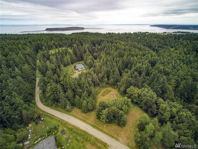 999 Critter Country Trail, Sequim, WA 98382 (#1621252) :: Engel & Völkers Federal Way