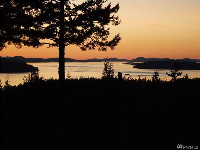 275 Valley View Rd, Lopez Island, WA 98261 (#1623395) :: The Kendra Todd Group at Keller Williams