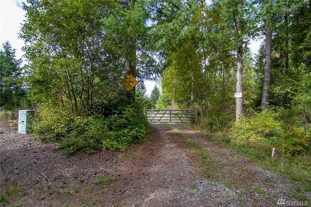 0 23rd St SW, Lakebay, WA 98349 (#1626684) :: Lucas Pinto Real Estate Group