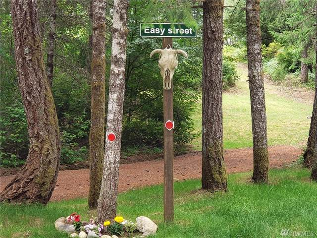 153 E Strayer Wy, Shelton, WA 98584 (#1628524) :: Mike & Sandi Nelson Real Estate