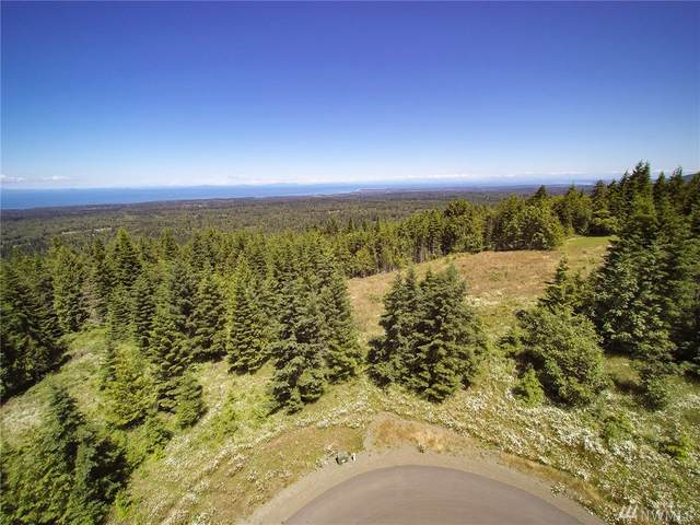 9999 Round Mountain Road, Port Angeles, WA 98362 (#1628825) :: Pacific Partners @ Greene Realty