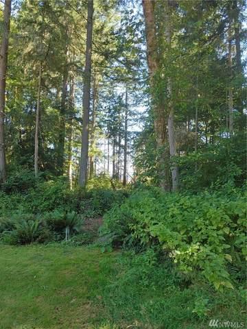 10412-& 10408 Matthews Wy, Anderson Island, WA 98303 (#1630246) :: Better Properties Lacey
