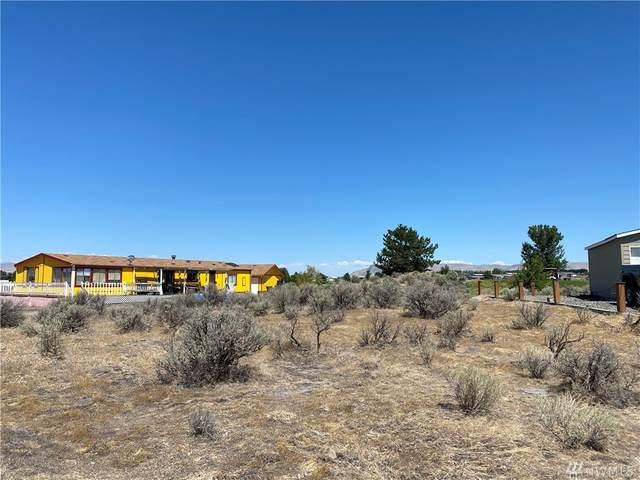 View Place SW, Mattawa, WA 99349 (#1631878) :: Mike & Sandi Nelson Real Estate