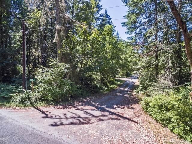 8010 Otso Pt Rd, Anderson Island, WA 98303 (#1633382) :: Better Properties Lacey