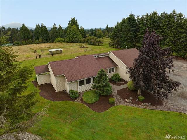 5919 91st Ave NE, Lake Stevens, WA 98258 (#1637749) :: Real Estate Solutions Group